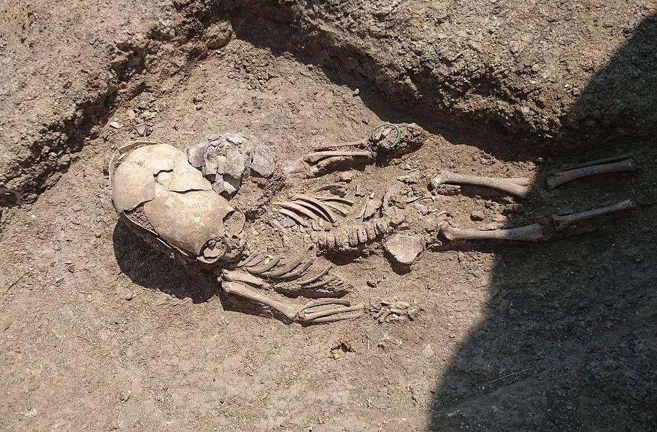 На Керченском полуострове археологи обнаружили погребение «инопланетянина»